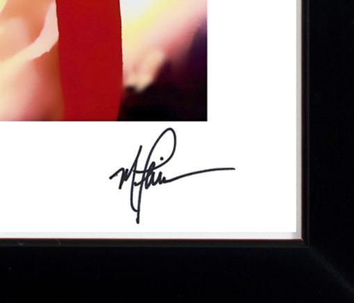 Liz Taylor Blue Velvet LEP Signature