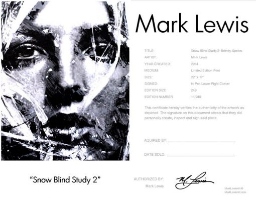 """Britney Spears """"Snow Blind Study 2"""" lep certificate"""